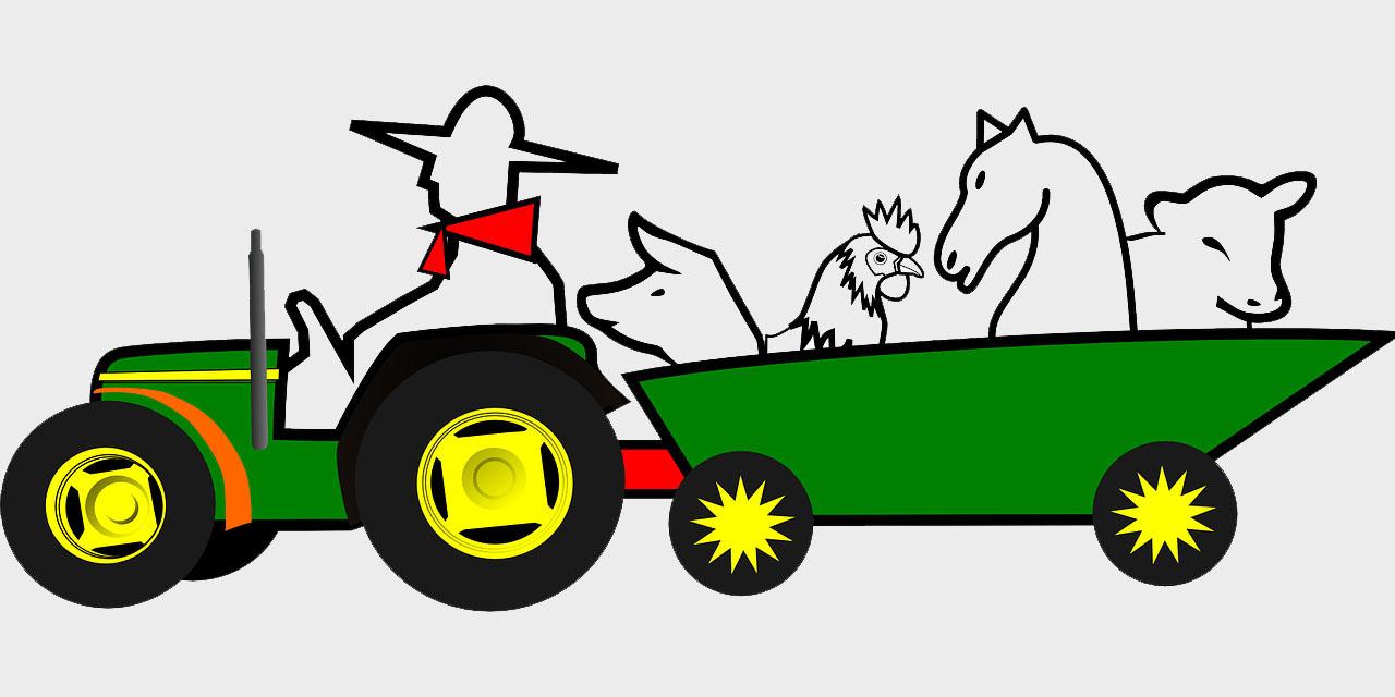 В США вновь вступил  в действие закон о реформировании животноводческого транспорта